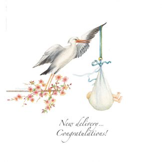 wishing well wenskaart new delivery congratulations!